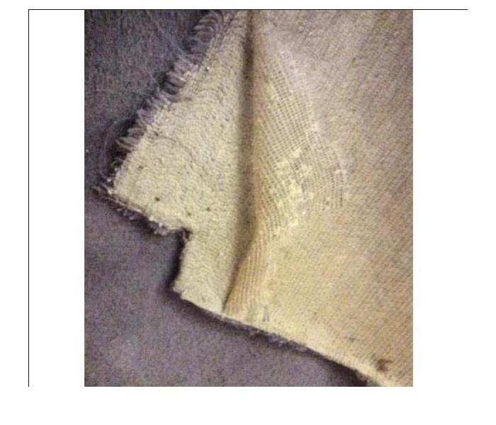 Water Damage Carpet delamination