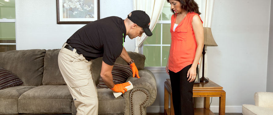 Westminster, MD carpet upholstery cleaning